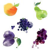 apple, pear, grape, plum, blueberry