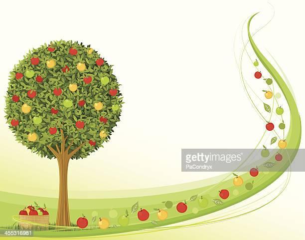 アップル時間の収穫