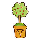 apple tree bonsai in a pot