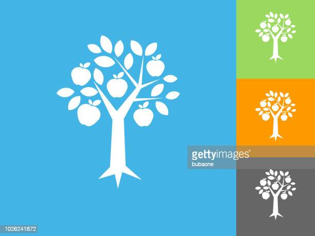 apple tree  flat icon on blue background - fruit tree stock illustrations
