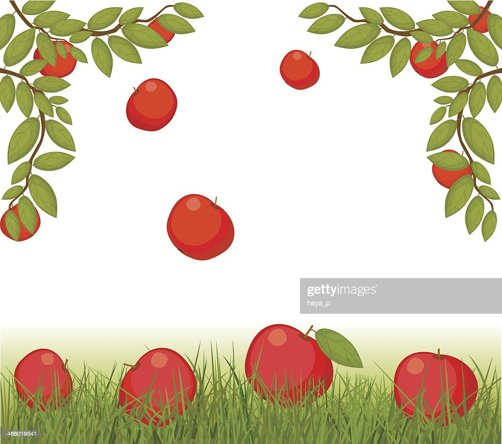 Apples And Fruit On Grass