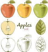Apples set