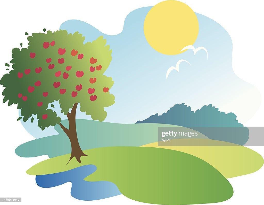 Appletree in summer landscape