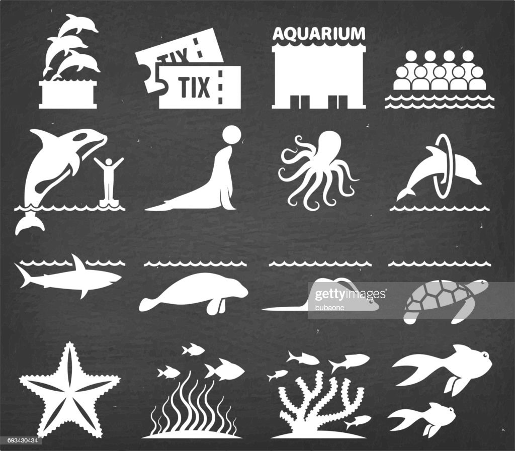 Aquarium Vector Icons Set on Black Chalkboard : stock illustration