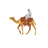 Arab man riding a camel