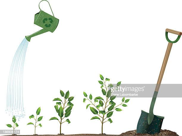 arbor day concept image with watering can and sprouting plants - watering can stock illustrations, clip art, cartoons, & icons