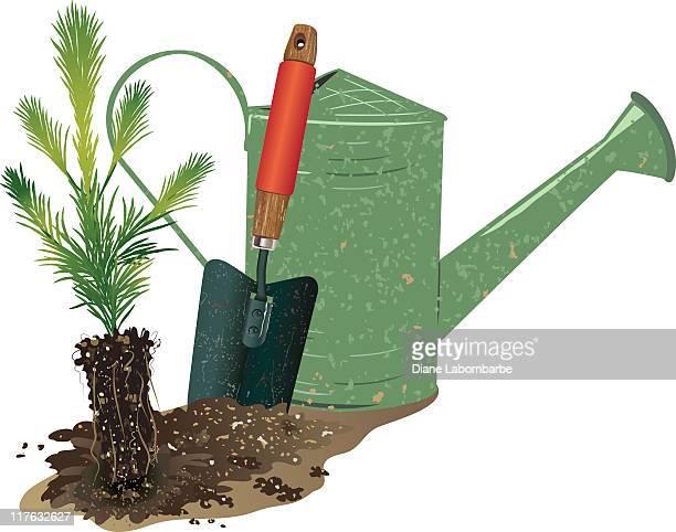Arbor Day Baum Pflanzen