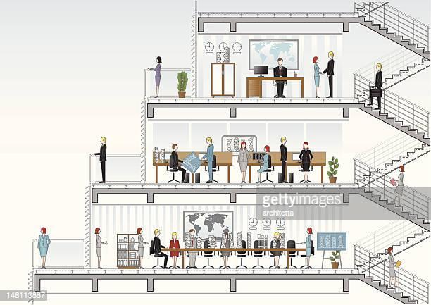 Arquitectura escritório secção