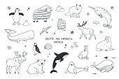 Arctic and antarctic polar doodle cartoon animals illustrations set