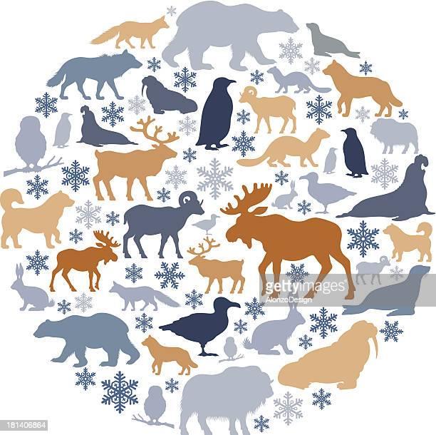 illustrations, cliparts, dessins animés et icônes de collage icône animaux de l'arctique - ours polaire