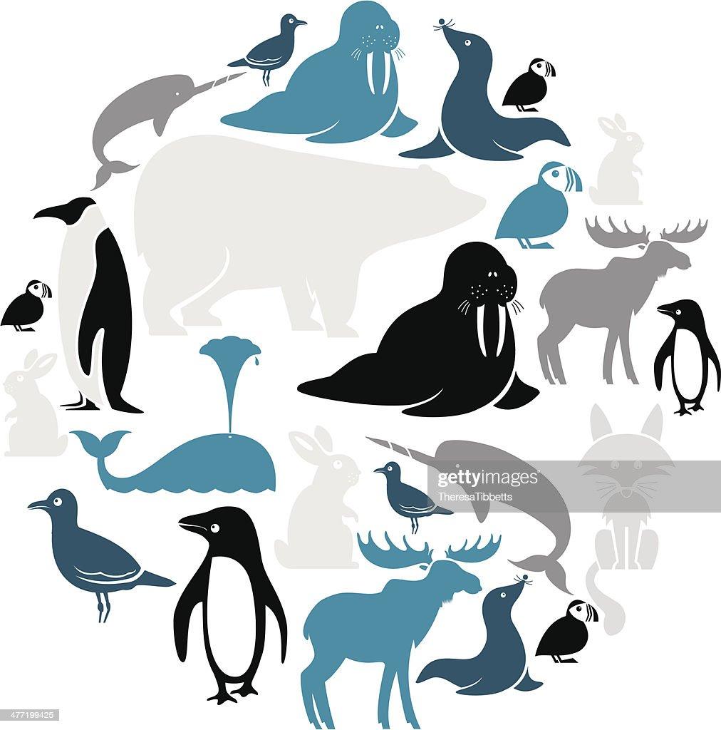 Arctic Animals Icon Set