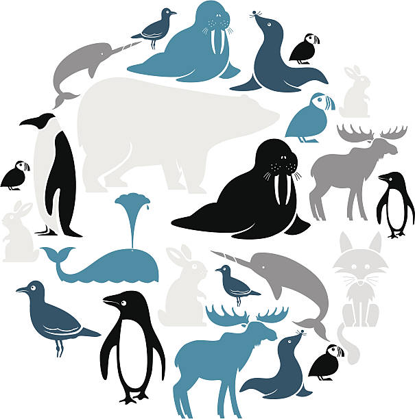 Arctic Animals Icon Set Wall Art
