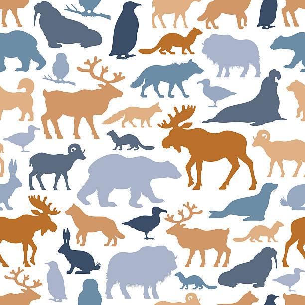Arctic Animals Pattern Wall Art