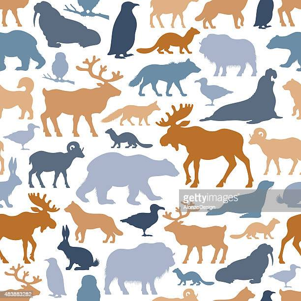 stockillustraties, clipart, cartoons en iconen met arctic animals pattern - poolklimaat