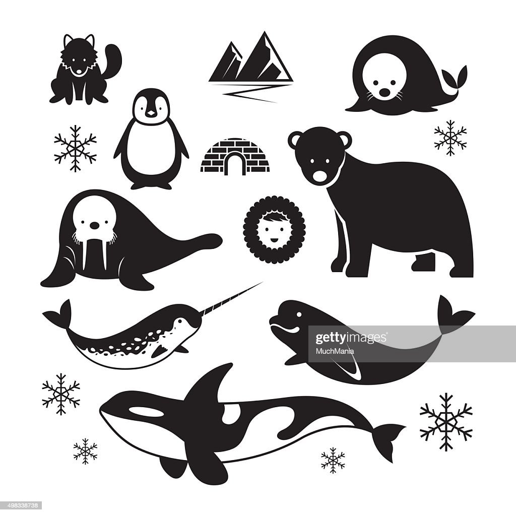 Arctic Animals Silhouette Set