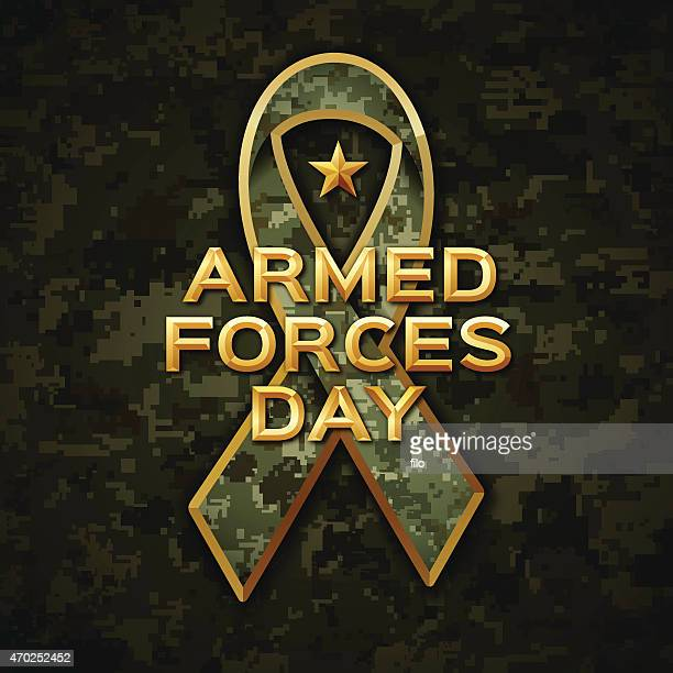 armed forces day - marines stock illustrations