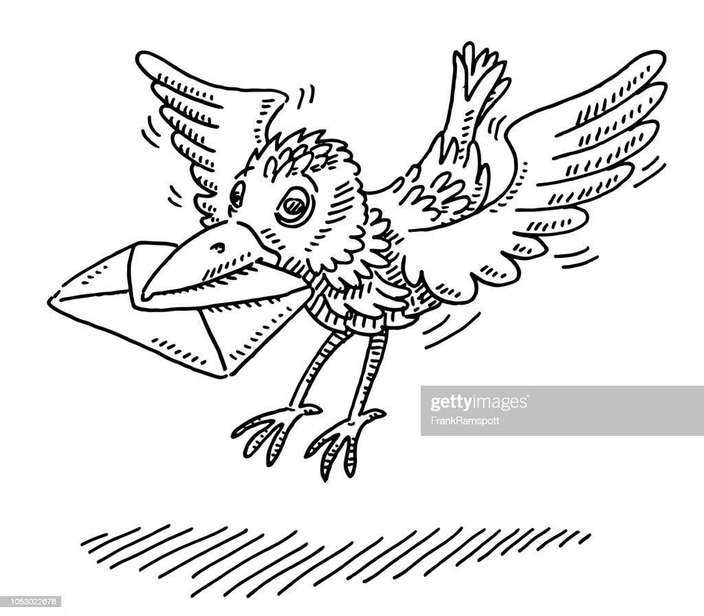 Ankommenden Brieftauben Bird Zeichnung : Vektorgrafik