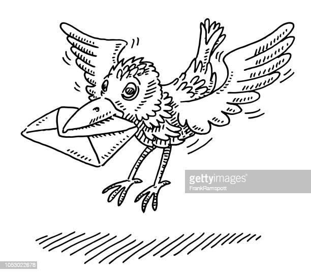 Ankommenden Brieftauben Bird Zeichnung