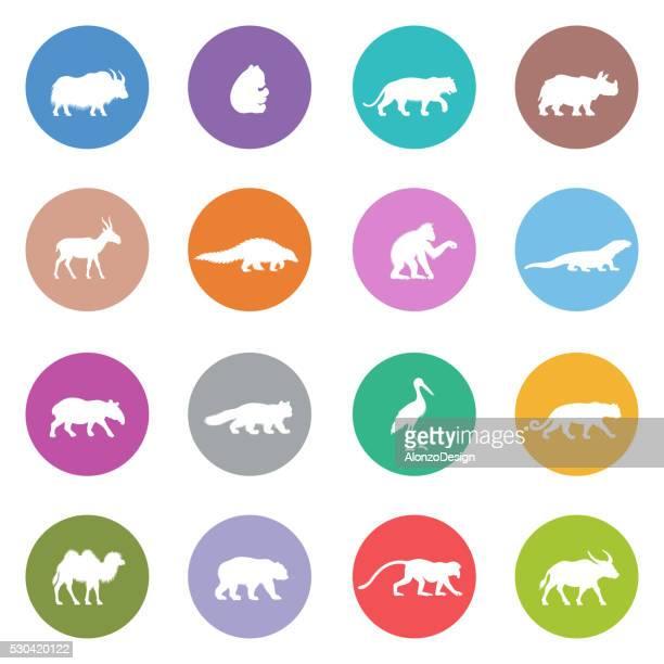 Asian Animal Icons