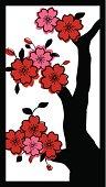 Asian Cherry Blossom Tree