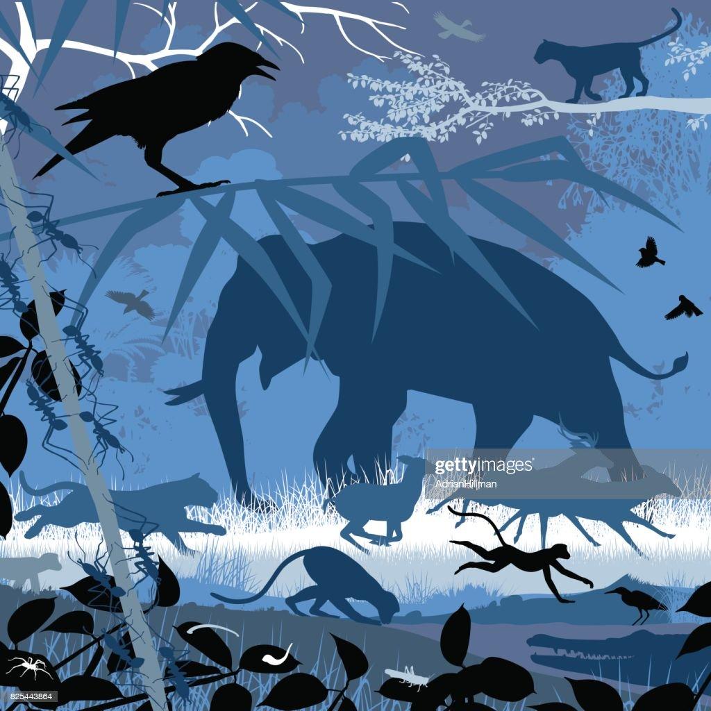 Asian wildlife in blue