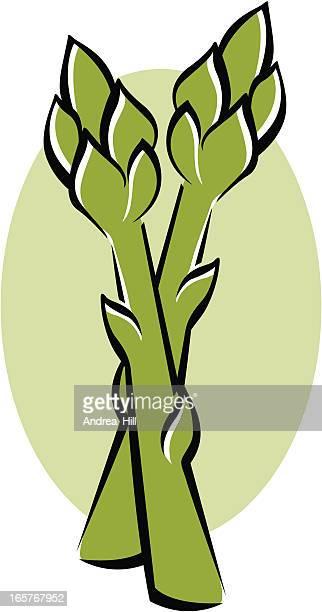 asparagus - asparagus stock illustrations, clip art, cartoons, & icons