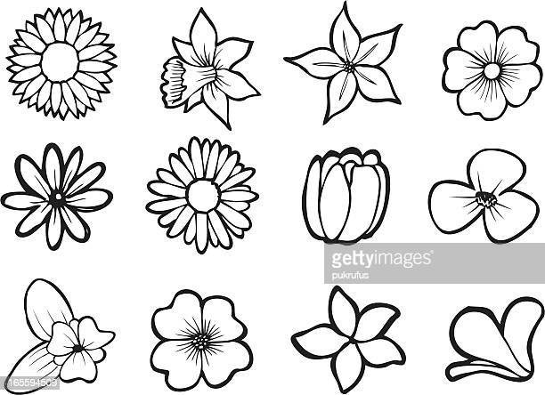 assorted flower line art - poppy stock illustrations, clip art, cartoons, & icons