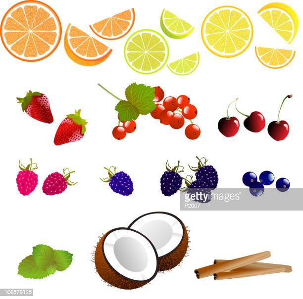 assorted fruits and flavors - mint leaf culinary stock illustrations, clip art, cartoons, & icons