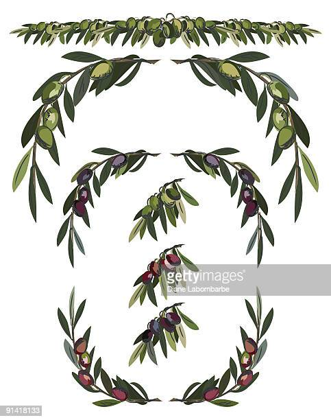 assorted olive branches in different colors green, red and black - kalamata olive stock illustrations