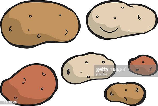 Assortment of different color and sized potatoes