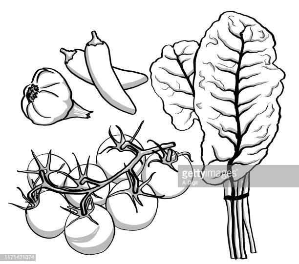 assortment of vegetables - chard stock illustrations, clip art, cartoons, & icons