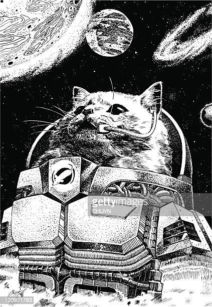 astronaut cat wearing a space suit with planets floating around him - pen and ink stock illustrations
