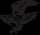 Atacking Eagle (Vector)