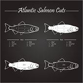Atlantic salmon cuts diagram