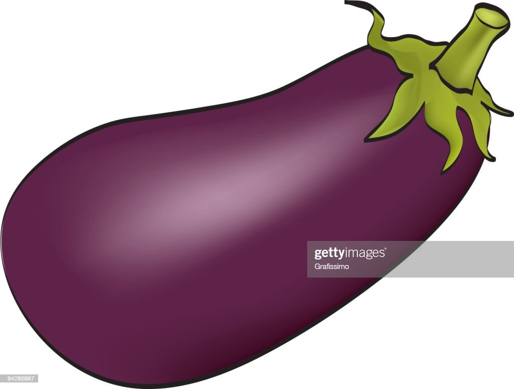 Aubergine plant on white