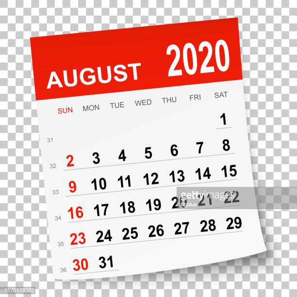 august 2020 calendar - august stock illustrations