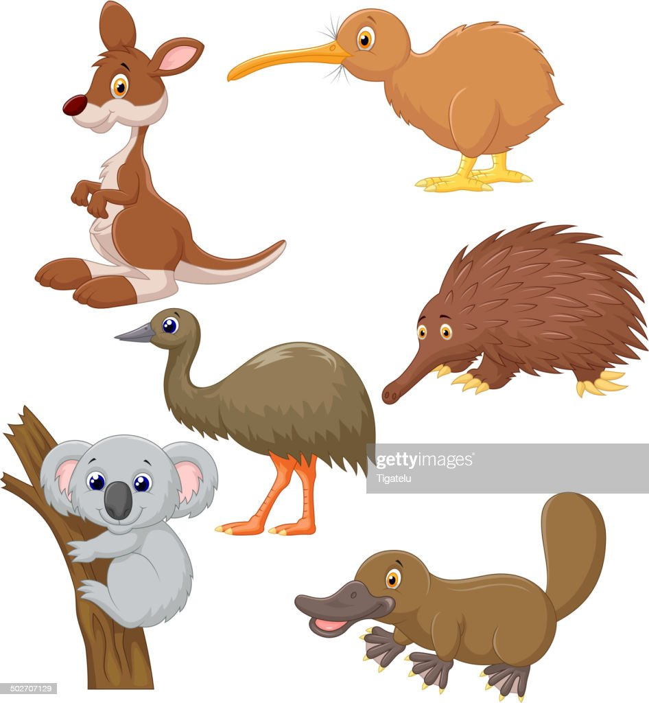 Australian animal cartoon