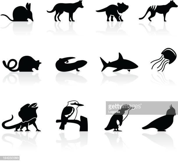 illustrazioni stock, clip art, cartoni animati e icone di tendenza di australiano icone animali, set di 2 - opossum