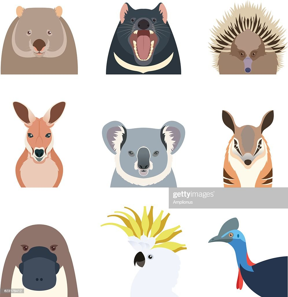 Australian animals flat icons