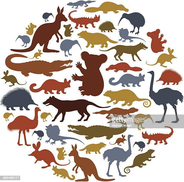 australian animals icon collage - animal stock illustrations