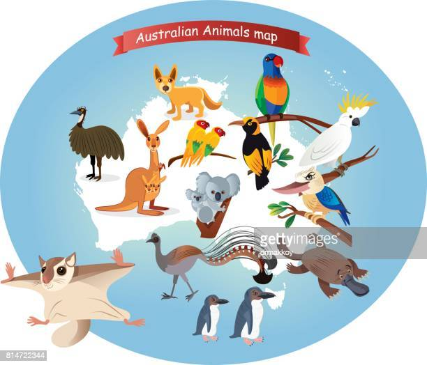 Australian  Animals Map