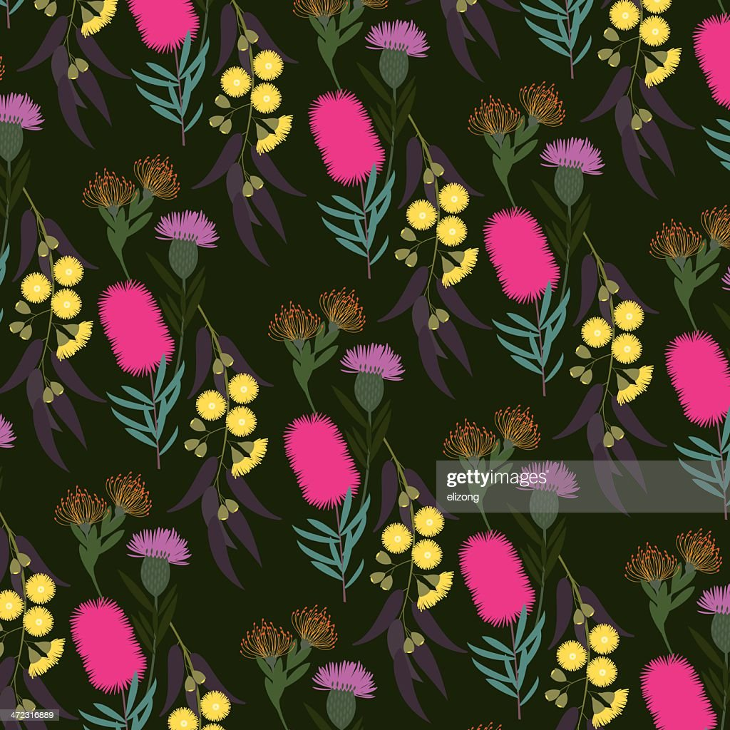 australian flora : Stock Illustration