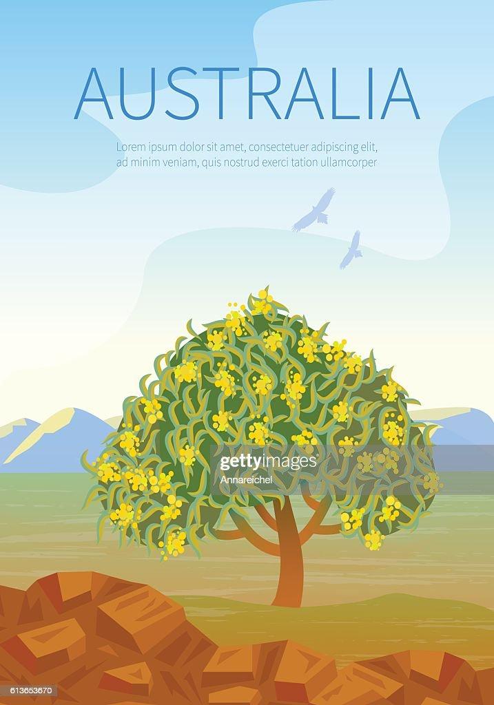 Australian landscape  poster with Golden Wattle.
