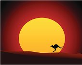 Australian Outback Sunset with Kangaroo/Wallaby (Vector Illustration)