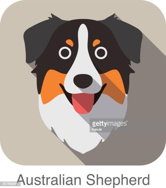 australian shepherd dog face flat icon, dog series - australian shepherd dogs stock illustrations