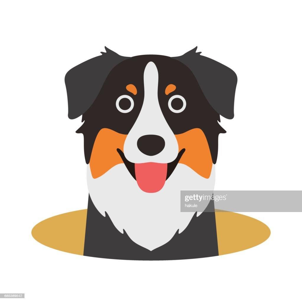 Australian Shepherd dog on the hole,watching, vector illustration