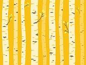 Autumn aspen tree pattern