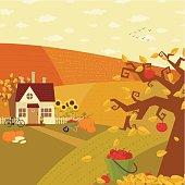 Autumn at farm