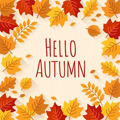Autumn Background - gettyimageskorea