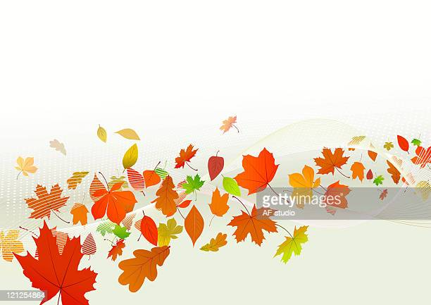 autumn background - part of a series stock illustrations